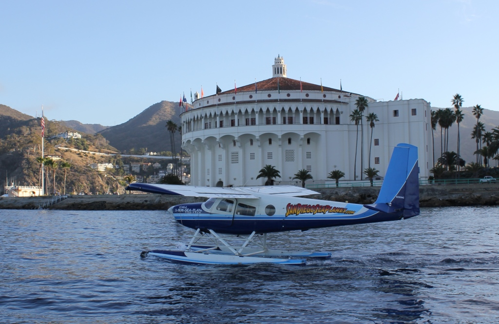 Whale Watching Catalina Island Tours